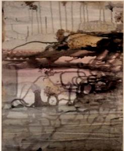 Mangrove. jpg